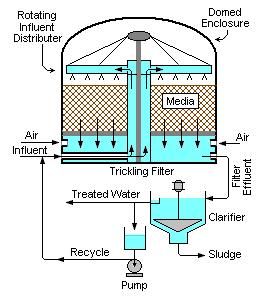 Een trickle-filter is zeer efficient in de omzetting van Nitriet naar nitraat en Ammonium verwijdering.